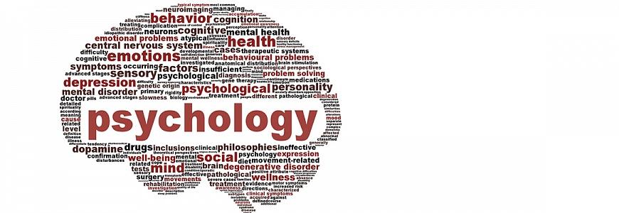 Реферат по психологии на заказ в Челябинске Компания Ника  Реферат по психологии